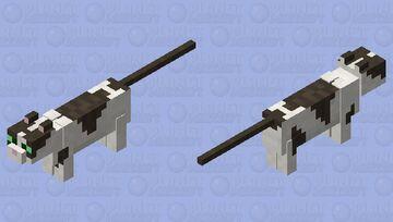 Misty (First attempt) Minecraft Mob Skin