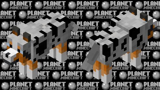 Australian Shepherd Minecraft Skin