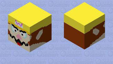 Every copy of SM64 is personalised Minecraft Mob Skin