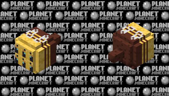 MULTIBEE 4: So stupid it's almost good Minecraft Skin