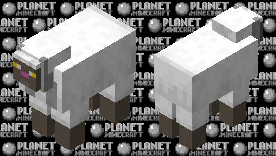 WooLoo Minecraft Skin