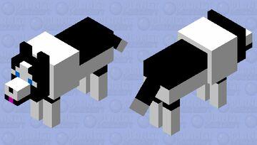 Jacky Border Collie Wolf Skin Minecraft Mob Skin