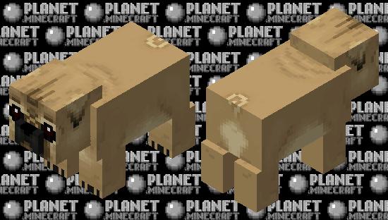 Pug puppy Minecraft Skin