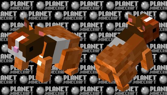 Cuy Minecraft Skin