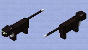 Ravenpaw Minecraft Mob Skin