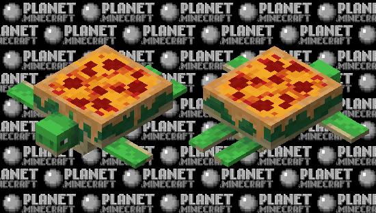 Pizza Shelled Turtle Minecraft Skin