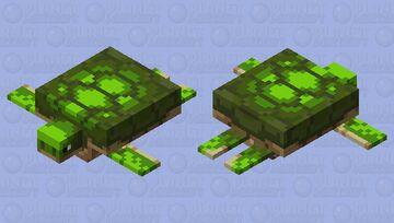 Block Palette Turtle Minecraft Mob Skin