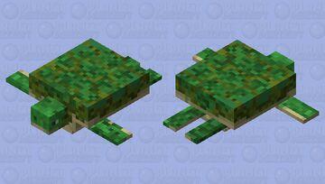 freshwater turtle Minecraft Mob Skin