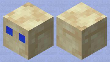 Beach Cube Minecraft Mob Skin