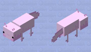 Axolotl (Caves&cliffs) Minecraft Mob Skin
