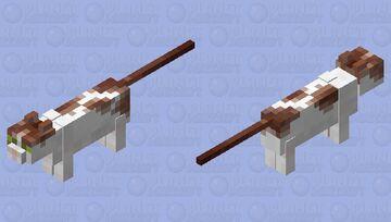 Soogie (my cat) Minecraft Mob Skin
