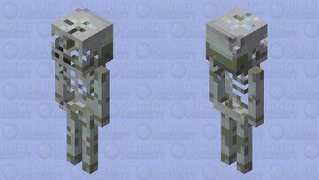 Very worn skeleton Minecraft Mob Skin