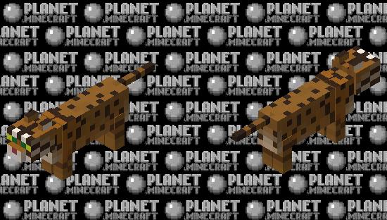 Bobcat Minecraft Skin