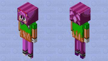 Amy Rose Minecraft Mob Skin