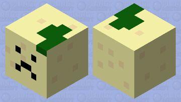 Me in a nutshell Minecraft Mob Skin