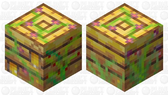 Shulker Bee Hive 🐝 Minecraft Skin