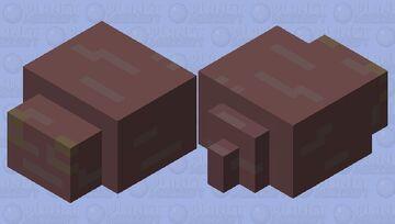 Slug.         Idk Minecraft Mob Skin