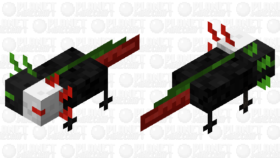 Ranboo Axolotl Minecraft Skin