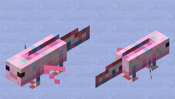 Axolotl / Heat / Remade / version: Nitwit Minecraft Mob Skin