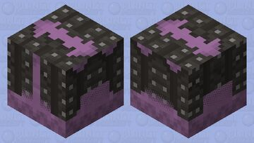 the eater Minecraft Mob Skin