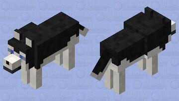 Husky :D Minecraft Mob Skin