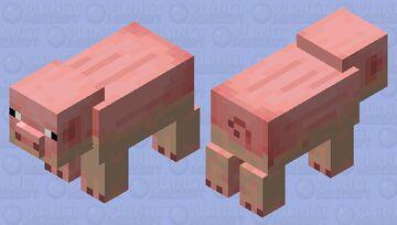 dried muddy pig Minecraft Mob Skin