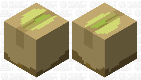 A Damaged Shipment of Pistachios Minecraft Skin