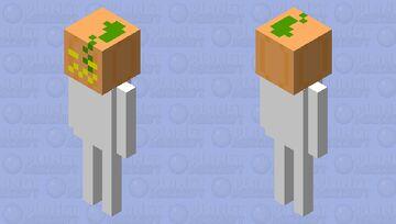 Pumpkin headed skeleton Minecraft Mob Skin