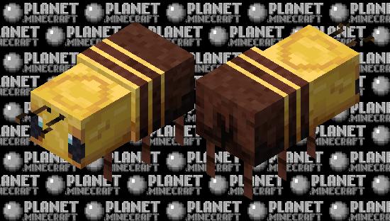 Bearly Beelievable (Bees-Knees) Minecraft Skin