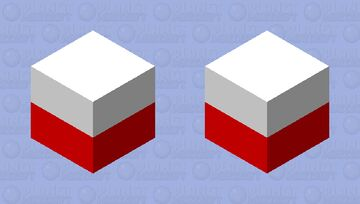 Original Shallow WEBR CA 2005-6 White and Red cube Minecraft Mob Skin