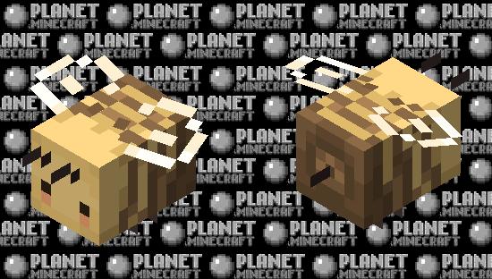 ✧ Soft Cute Bee Skin ✧ Minecraft Skin