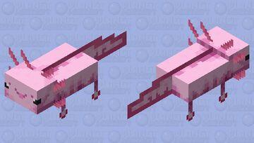 HD Cute Axolotl Minecraft Mob Skin