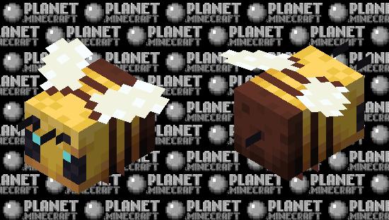 Bee EDIT Minecraft Skin