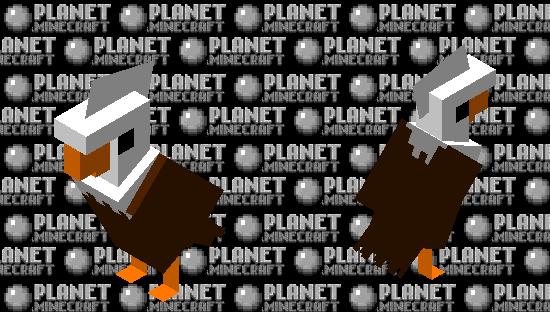 An Eagle Skin Minecraft Skin