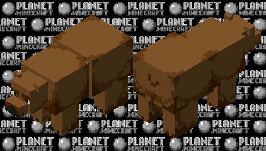 brown bear Minecraft Skin