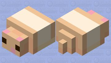 𝕞𝕖𝕝𝕝𝕠 𝕥𝕙𝕖 𝕠𝕣𝕒𝕟𝕘𝕖 & 𝕨𝕙𝕚𝕥𝕖 𝕙𝕒𝕞𝕤𝕥𝕖𝕣 Minecraft Mob Skin