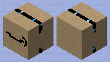 Amazon Box Minecraft Mob Skin
