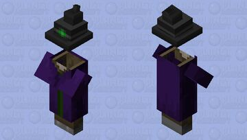 oops I used an invisibility potion Minecraft Mob Skin