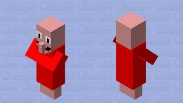 Meat anaxianum wizard Minecraft Mob Skin