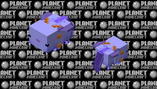Ridable elytra Axo Minecraft Skin