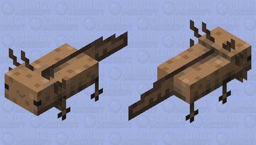 Actually Smiling Axolotl (Brown) Minecraft Mob Skin