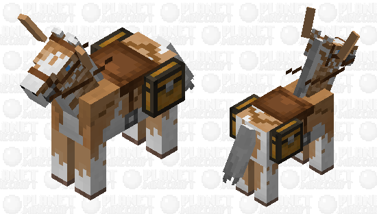 A sad, ugly cookie Minecraft Skin