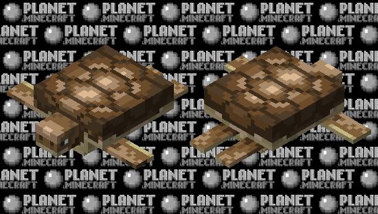 Prehistoric Turtle Minecraft Skin