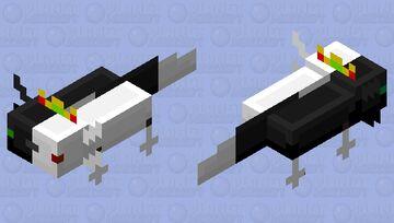 Ranboo axolotl Minecraft Mob Skin