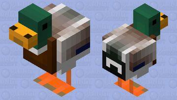 pato-real (Anas platyrhynchos) Minecraft Mob Skin