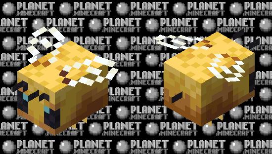 Bbb Minecraft Skin