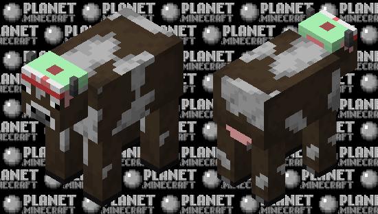 Cow with my hat Minecraft Skin