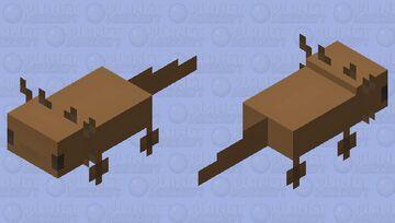 Axolotl 2.0 Minecraft Mob Skin