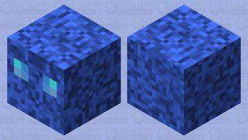 Water cube Minecraft Mob Skin