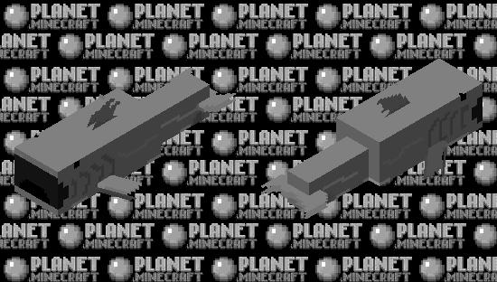 ŚHÂRK PÖG Minecraft Skin